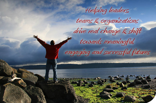 Facilitating Organizational Change, Management Training, Executive Coaching, Morale Building, Conflict Resolution